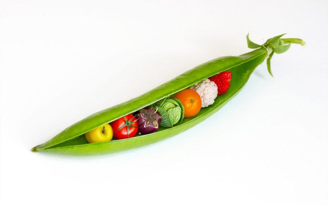 Observation du comportement alimentaire, de la parole et de l'évolution dentaire